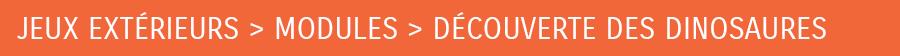 DÉCOUVERTE DES DINOSAURES